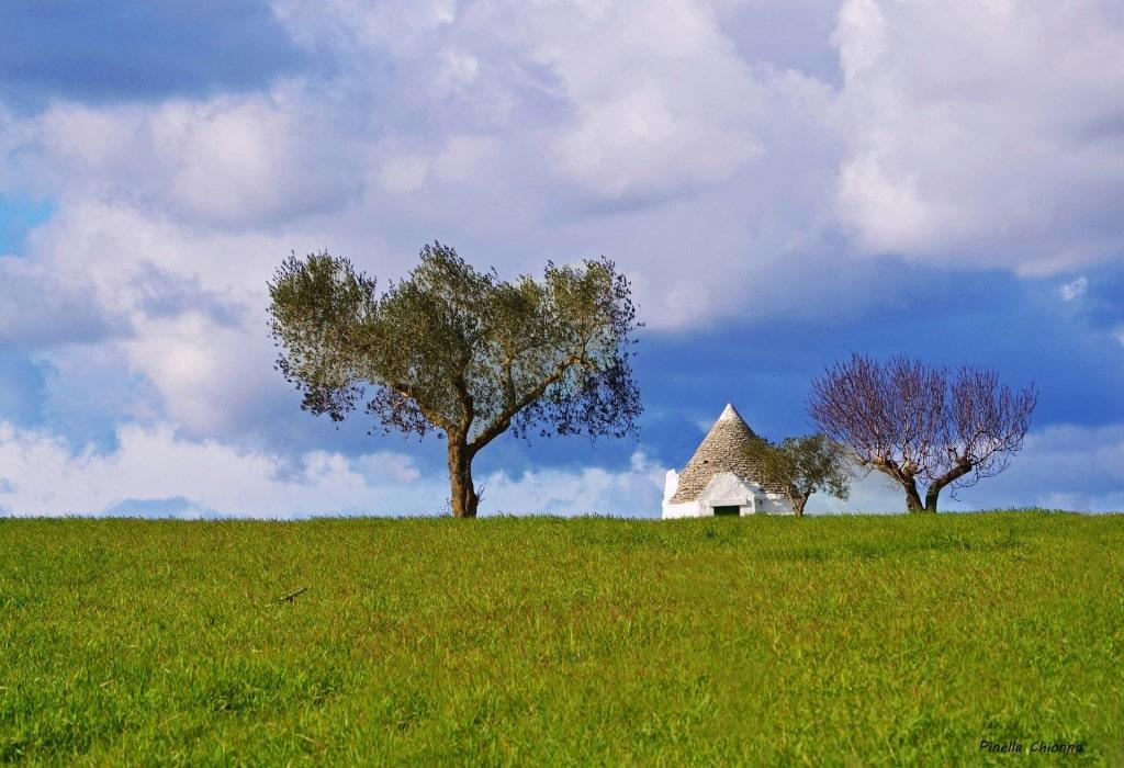 #autenticoitaliano, #hiddenspots, #trulli, #typicalhouses, #hills, # italianvillage, #Itria