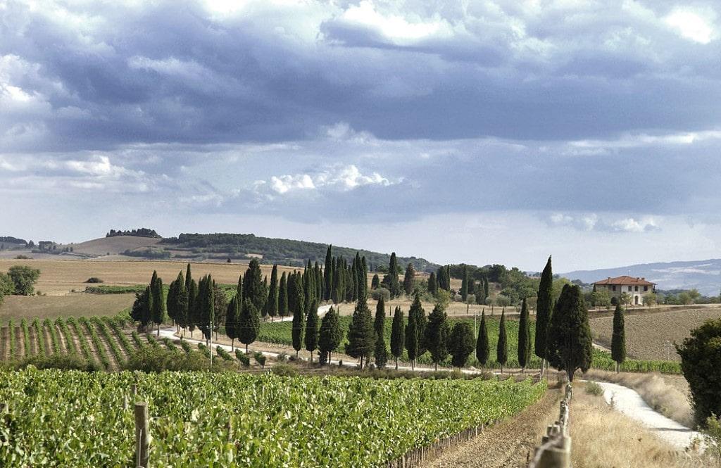 #Pieve, #Pienza, #Toscana, #hiddenspots, #Orcia, #Italianwine, #detail