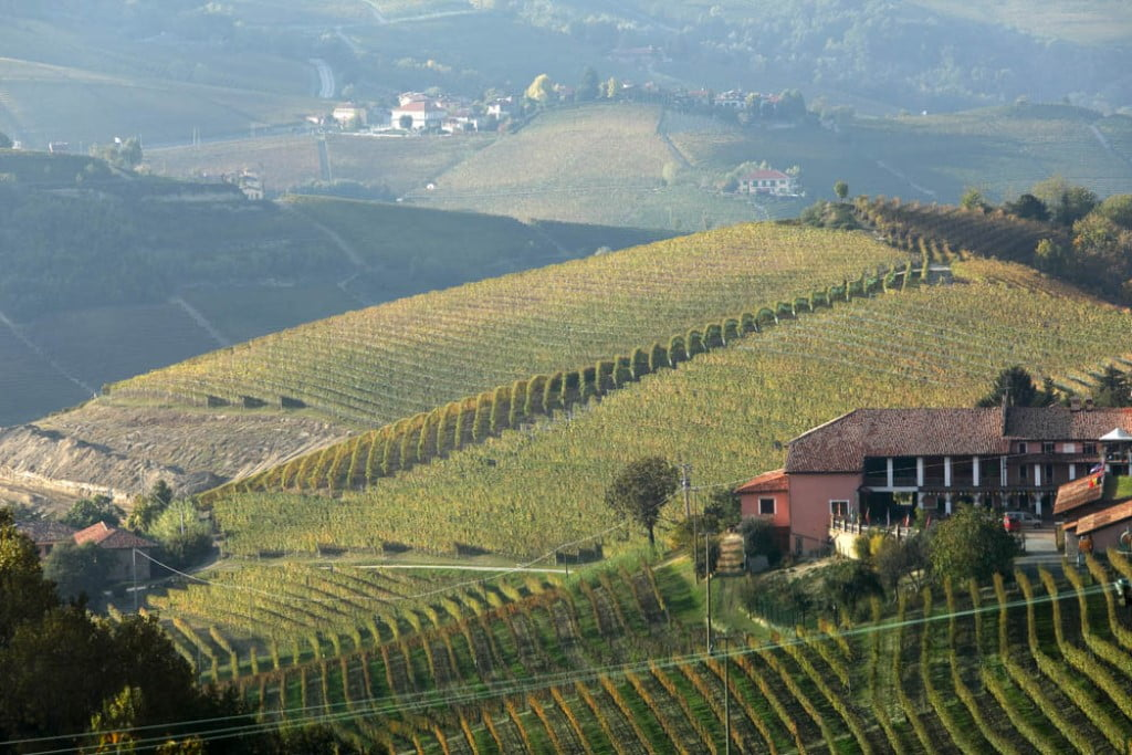 #bric, #sorì, #vineyards, #hills, #wine, #Bussia, #Oddero